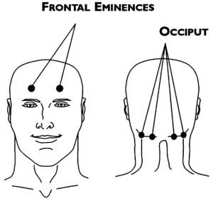 Frontal Occipital Holding